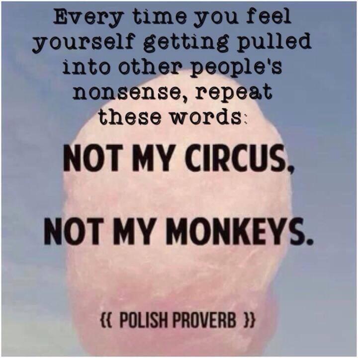 not my monkeys.jpg